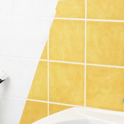 Pintar os Azulejos da Casa de Banho