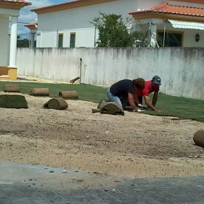 Manutenção Jardim