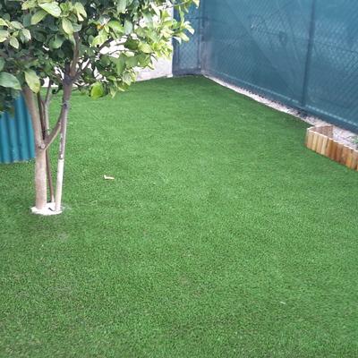 Jardim e canteiros - Pontinha