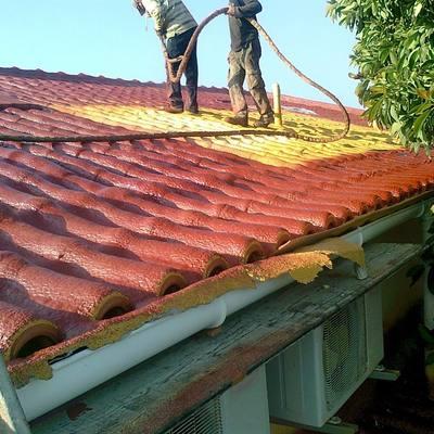 Pintura telhado