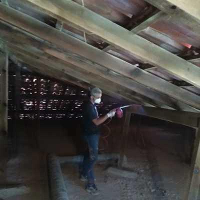 Tratamento madeira Telhado