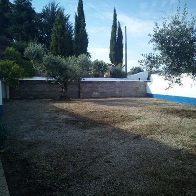 Jardim 2 Depois