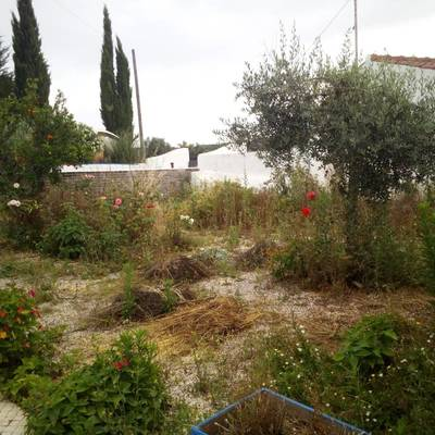 Jardim 2 Antes