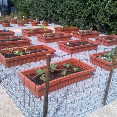 Hortas ornamentais - Construção de jardim de moradia