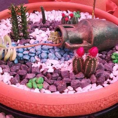mini jardim numa taça de barro