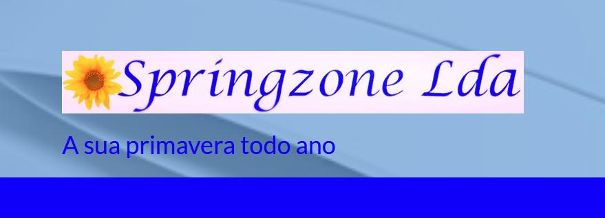 Springzone Lda