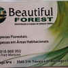 Beautifulforest