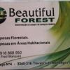 Beautifulforest