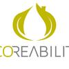 Ecoreabilita, Engenharia Ao Serviço Da Sustentabilidade