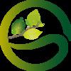 Gotas de Orvalho - Jardinagem & Construção