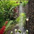 Esconda o seu chuveiro com plantas