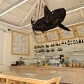 Surf Café 1
