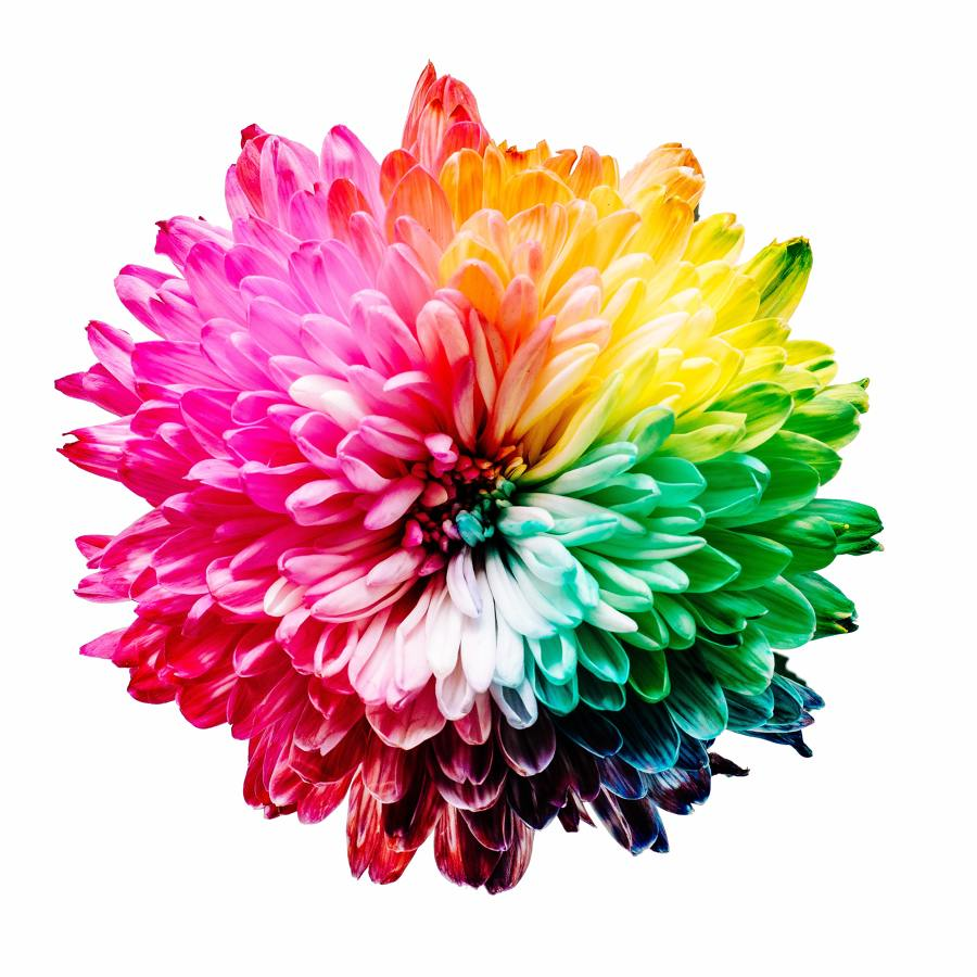 combinação de cores decoração