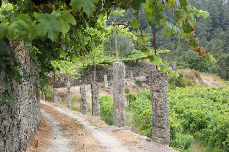 Entrada privada na quinta
