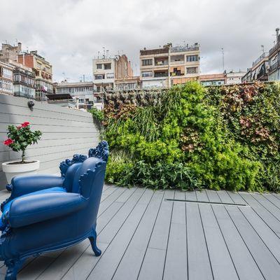 Dicas de profissionais para ter um jardim vertical incrível