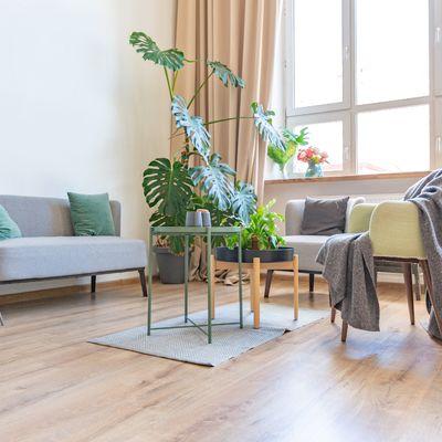 A ordem a seguir na hora de reformar o seu novo lar