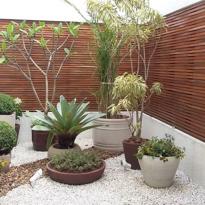 10 dicas para cuidar do seu jardim no verão