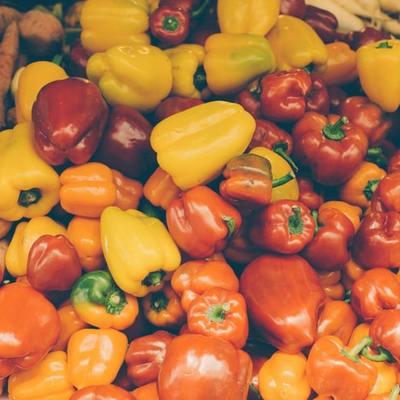 Horta em casa: quais são as melhores espécies para plantar em vaso?