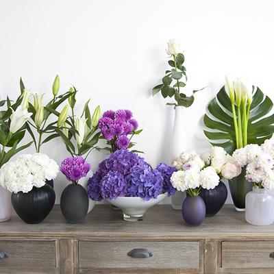 Traga o Feng Shui de plantas e flores para o seu lar!