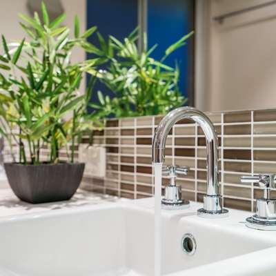 Bambu da sorte na casa de banho