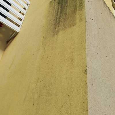 Limpeza parcial de fachada 16/11/2020