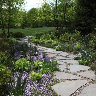 6 tipos de plantas para ter um jardim com glamour