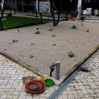 Projeto Paisagismo e manutenção jardim
