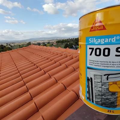 Limpeza e proteção de telhados contra matéria orgânica