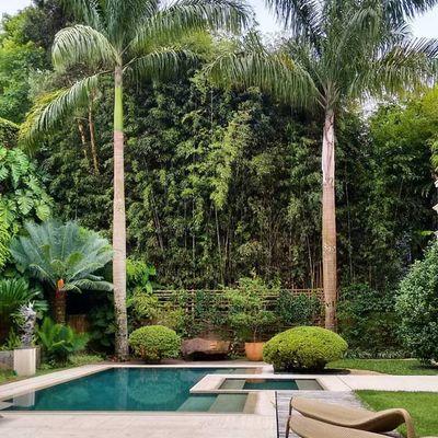 Como conseguir um jardim sustentável e fácil de manter