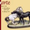 Cavalos Juntos (TJ)