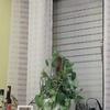 Colocação de janelas duplas
