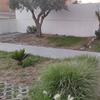 Construção De Jardim