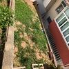 Nivelamento De Terreno
