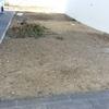 Pavimentar quintal
