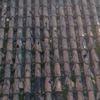Manutenção De Telhado