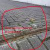 Nivelação de rampa de acesso a garagens e reparação/pintura de muro