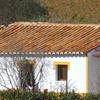 Substituir telhado