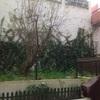 Remodelar jardim de apartamento