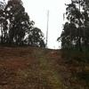 Medidas de terrenos florestal + terreno de casa com azenha