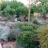 Mantenimento jardim