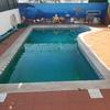 Revestir piscina