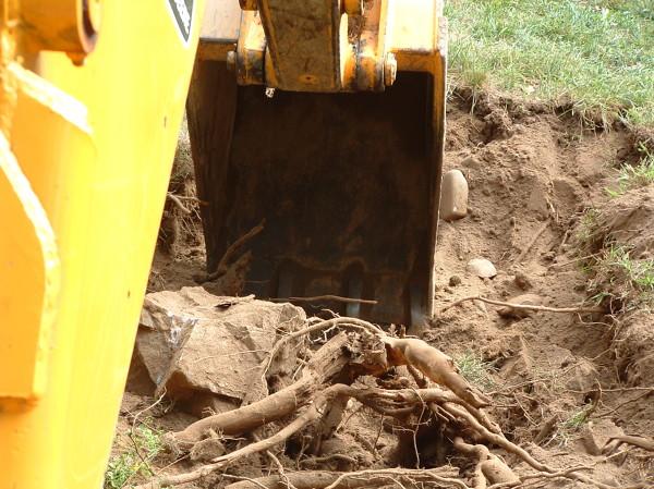 excavaciones_155_18
